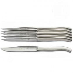 Luxury boxed set of 6 solid polished stainless steel knives