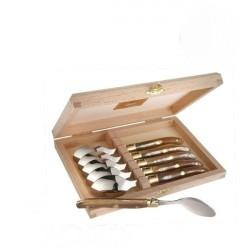 Coffret Grand Luxe 6 petites cuillères manche Corne claire véritable