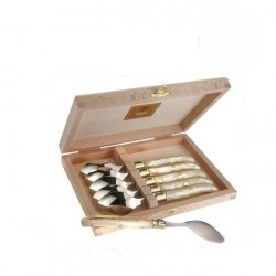 Coffret Grand Luxe 6 petites cuillères manche Nacrine marbrée naturelle